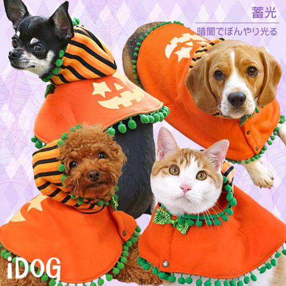 犬 服 iDog かぼちゃケープ アイドッグ 犬の服 犬服 ハロウィン