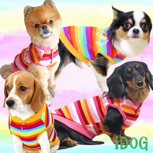 犬 服 iDog カラフルボーダーパイルタンク アイドッグ 犬の服 犬服