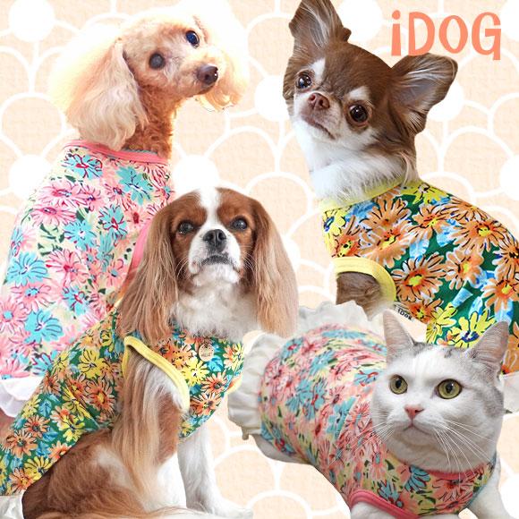犬 服 iDog フラワーシフォンレースタンク アイドッグ 犬の服 犬服