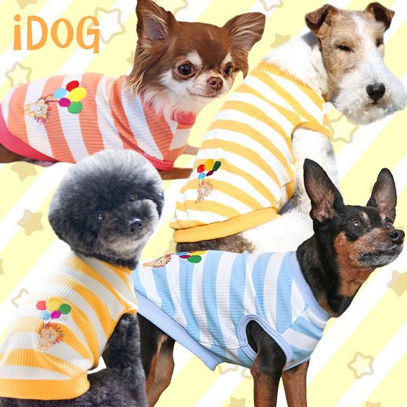 犬 服 iDog カラフルライオンのリブニットボーダータンク アイドッグ 犬の服 犬服