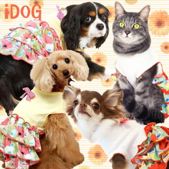 スカート ワンピ ドレス フリル 犬 服 iDog ボーダーリボンのポピーワンピ アイドッグ 犬の服 犬服