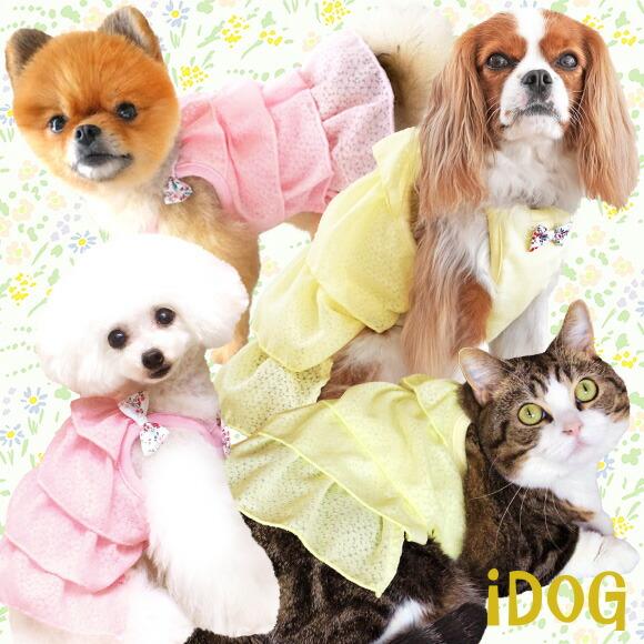 スカート ワンピ ドレス フリル 犬 服 iDog 小花リボンのシフォンドットワンピ アイドッグ 犬の服 犬服