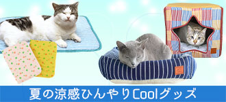 【楽天市場】猫のケア用品> ねこねこ夏快適特集(クールアイテム・ひんやり):iCat【猫首輪&猫グッズ】