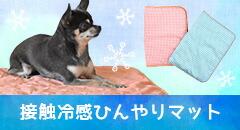 かぶりもの特集 犬の服のiDog&iCat