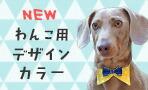 【楽天市場】iDog 犬用デザインカラー