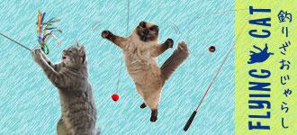 【楽天市場】釣竿じゃらし:猫の首輪のiCat