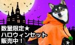 HAPPY HALLOWEEN☆ハロウィン