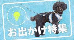 お出かけ特集|犬の服のiDog&iCat