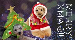 【楽天市場】季節の特集> クリスマス特集:犬の服のiDog