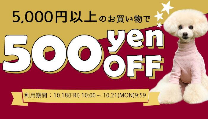 5000円以上購入で500円OFFクーポン