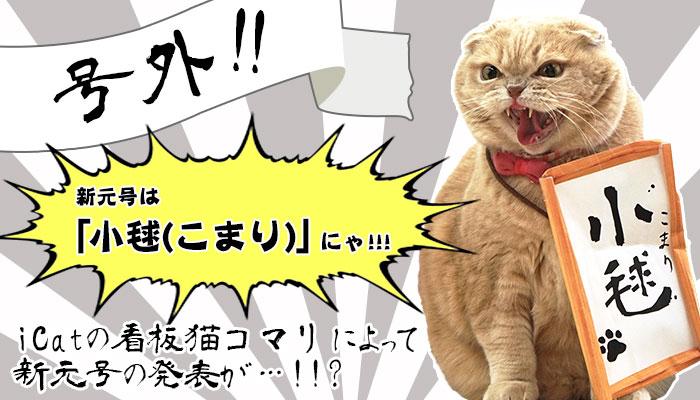 【楽天市場】キャンペーン> こまりの新元号発表:iCat【猫首輪&猫グッズ】