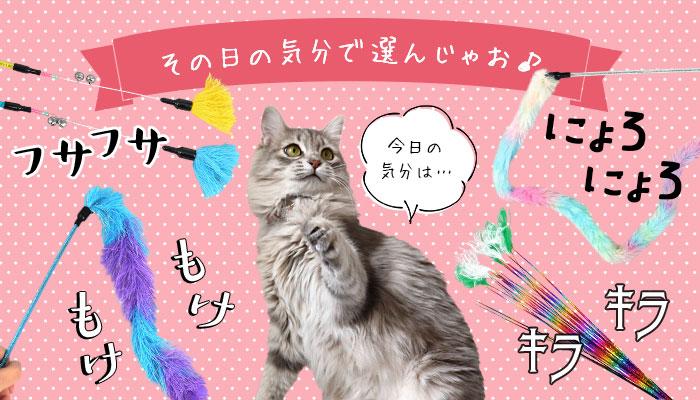 猫のおもちゃ ねこじゃらし|猫の首輪のiCat