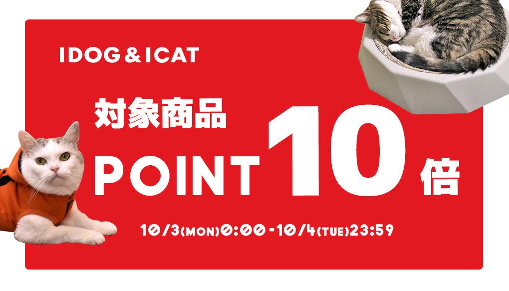 【楽天市場】キャンペーン>ポイント10倍:猫の首輪のiCat