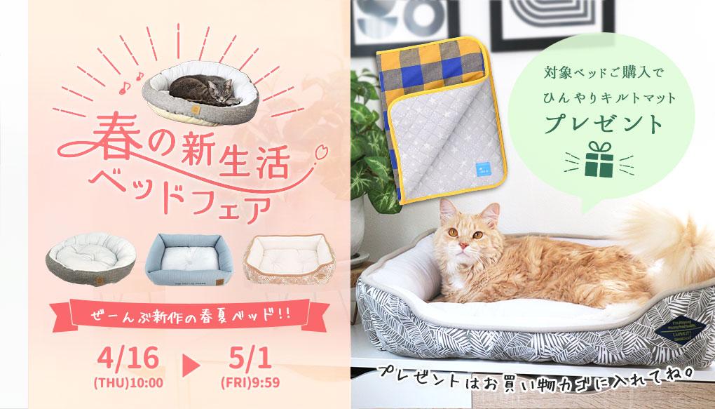 【楽天市場】キャンペーン>春の新生活ベッドフェア:猫の首輪のiCat