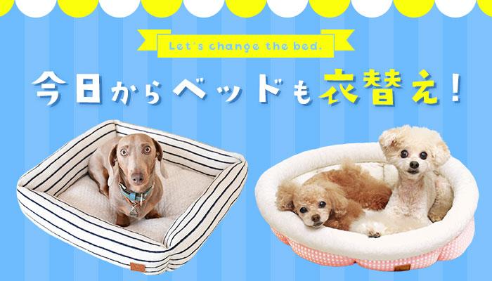 今日からベッドも衣替え|犬の服のiDog&iCat