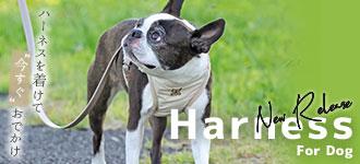 【楽天市場】犬の首輪 リード ハーネス:犬の服のiDog