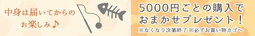 【楽天市場】5,000円以上のお買物でおやつorおもちゃ 1点プレゼント ※カゴに入れてください:iCat【猫首輪&猫グッズ】