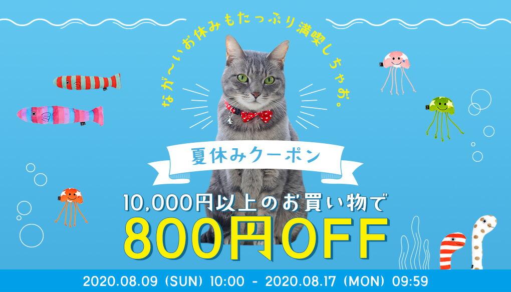 夏休みクーポン |猫の首輪のiCat