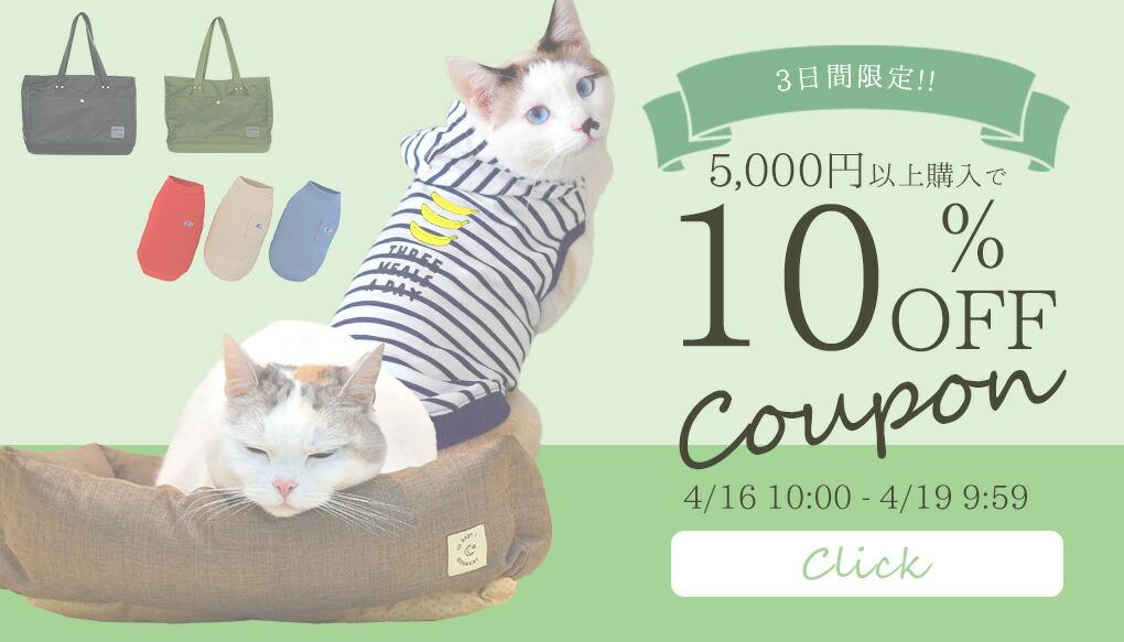 5000円以上で10%OFF |猫の首輪のiCat