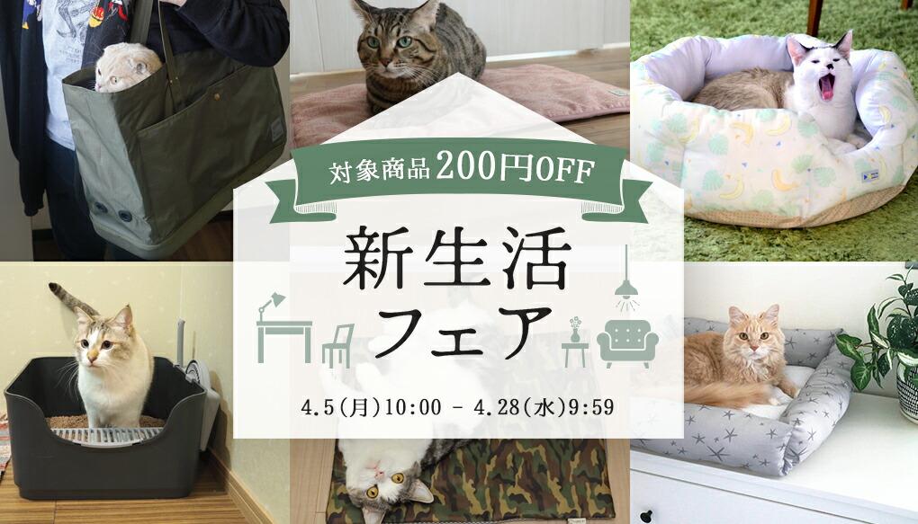 新生活フェア |猫の首輪のiCat