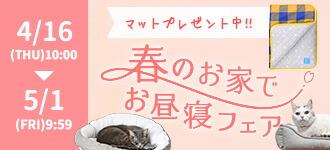 【楽天市場】キャンペーン>春の新生活ベッドフェア:iCat【猫首輪&猫グッズ】