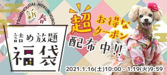 【楽天市場】キャンペーン> 中身が全て選べる!つめ放題福袋:犬の服のiDog