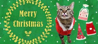 【楽天市場】キャンペーン> クリスマス特集:iCat【猫首輪&猫グッズ】