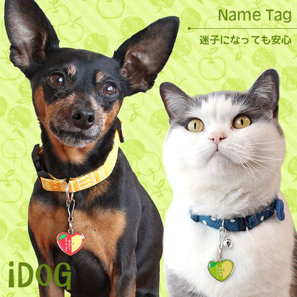 犬 猫 ペット 迷子札 iDog&iCat ネームタグ【迷子札ハート型】りんご ネームプレート 名札 ドッグタグ