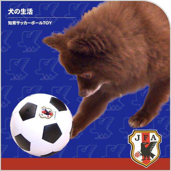 犬 猫 ペット 犬の生活 スポーティートレーニング 知育サッカーボールTOY おもちゃ ボール 犬のおもちゃ