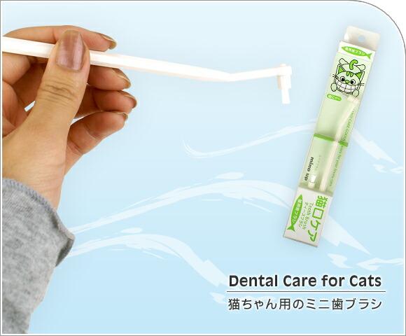 猫 デンタルケア 猫口ケア ティースブラシ 猫用ミニ歯ブラシ 歯ブラシ 歯磨き はみがき ハミガキ