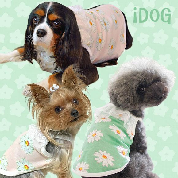 【犬服】 iDog アイドッグ マーガレットレースキャミ【春物】【夏物】[犬の服のiDog]