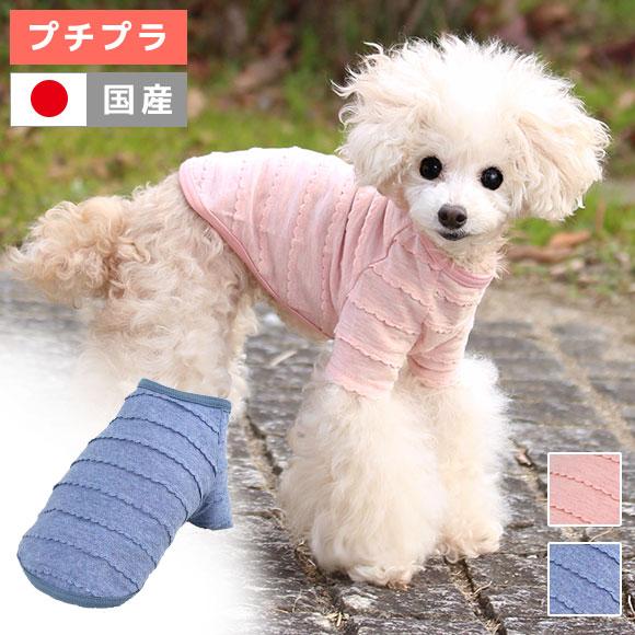 犬 服 iDog レースボーダーTシャツ アイドッグ 犬の服 犬服