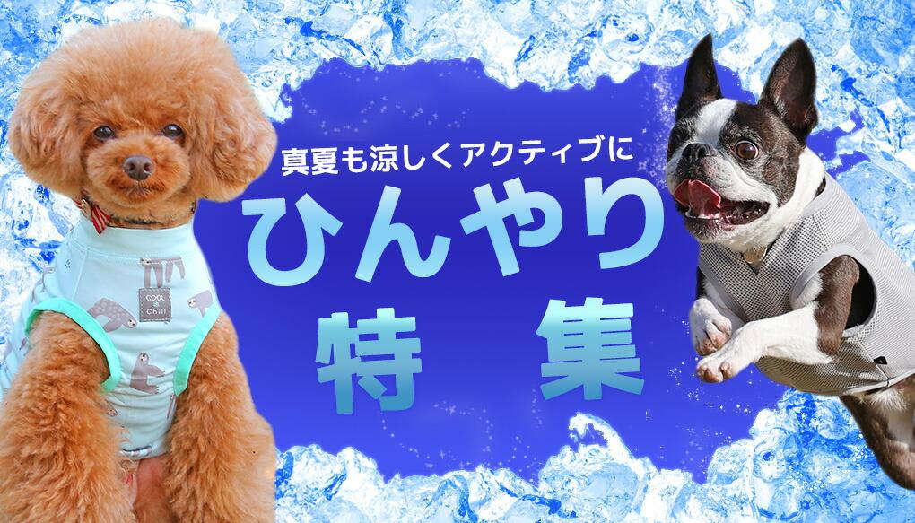 【楽天市場】季節の特集> 夏の暑さ対策!Cool涼感ウェア・ひんやりグッズ特集:犬の服のiDog