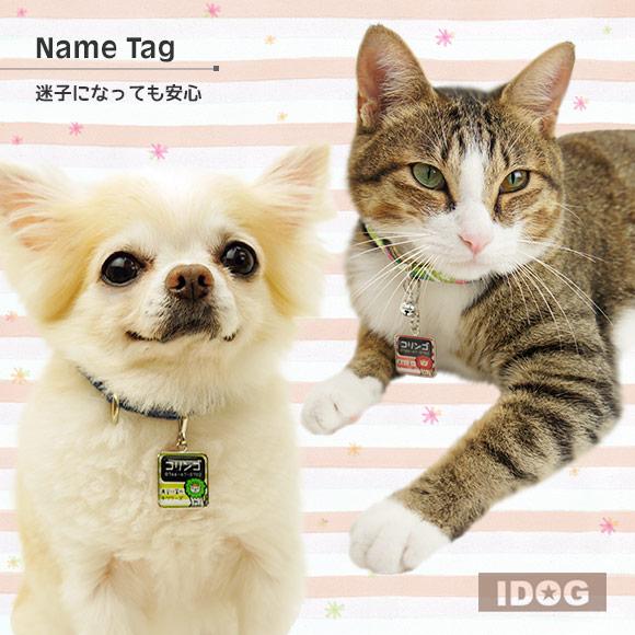 犬 猫 ペット 迷子札 iDog&iCatオリジナル ネームタグ角丸 迷子札ライオン ネームプレート 名札 ドッグタグ