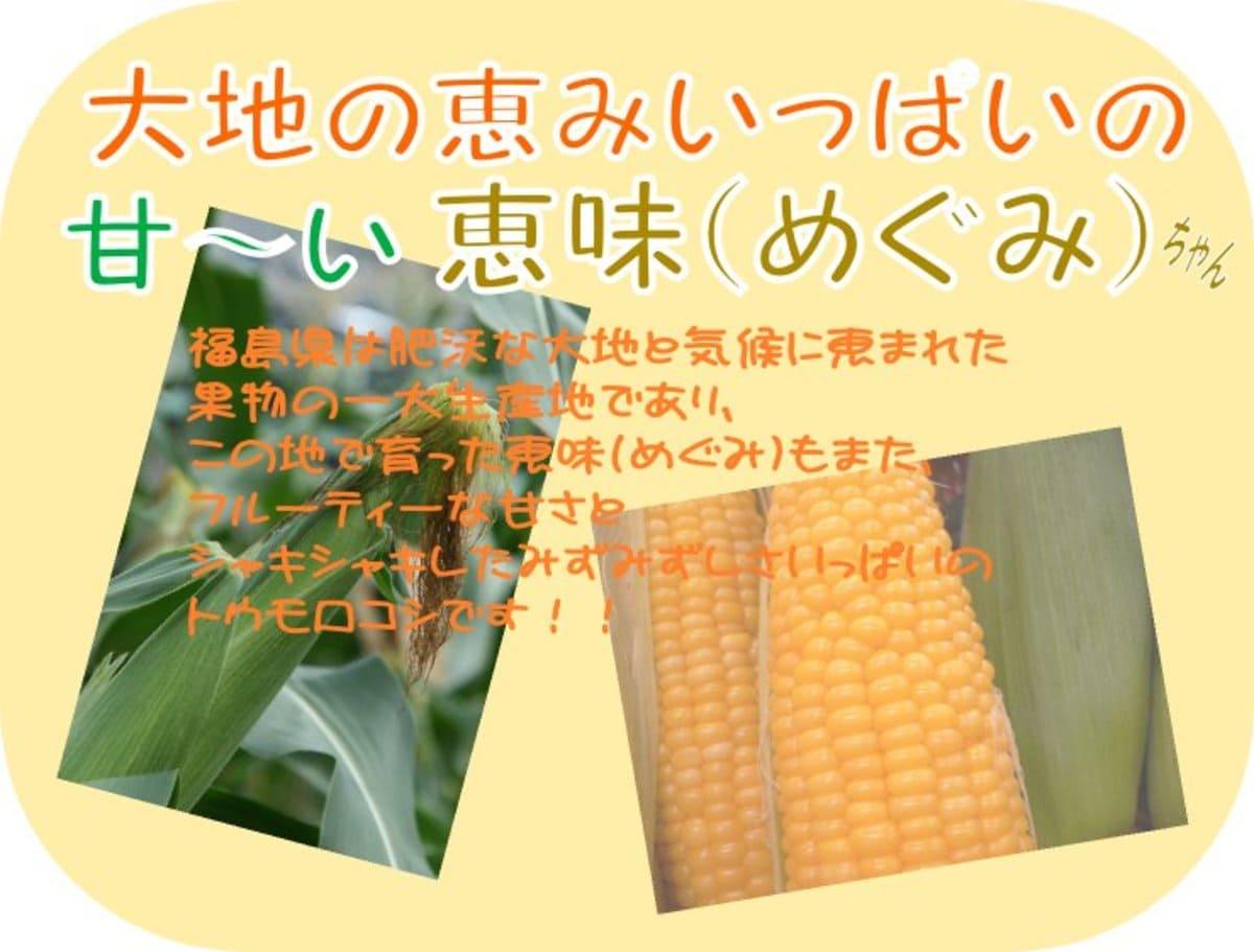 福島産 とうもろこし 恵味ゴールド(めぐみ)