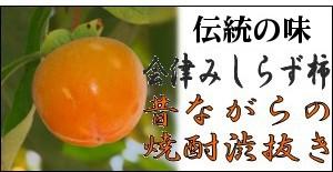 献上柿『会津みしらず柿』10k