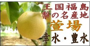 萱場梨『幸水/豊水』