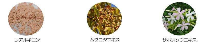 グラマリウムクレンジングゲル植物由来の洗浄成分