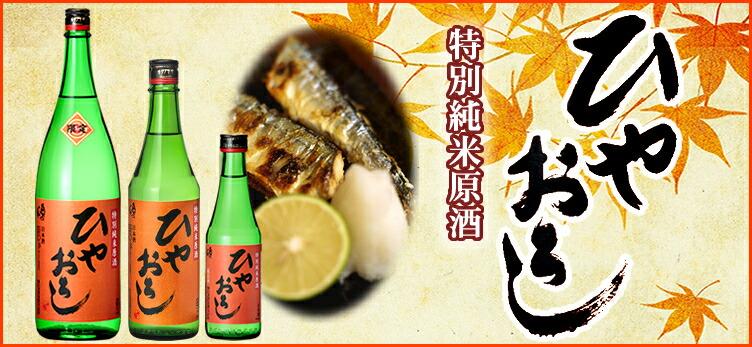 特別純米原酒ひやおろし