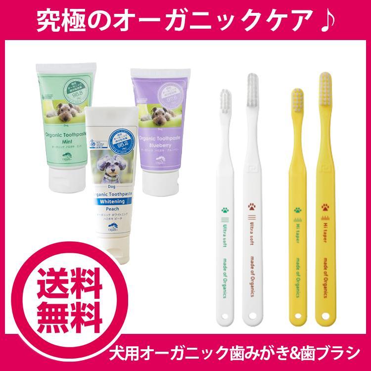 オーガニック歯磨き&歯ブラシ