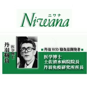 丹羽医学博士