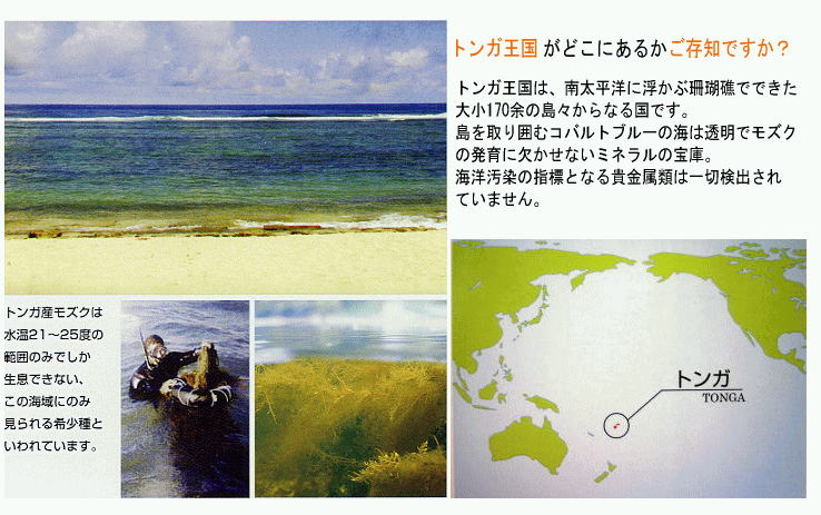 """同じ海藻でも、ワカメ、コンブよりもモズクの方がフコイダンの含有量が多く、日本では沖縄モズクが評価を集めてきました。ところがこの沖縄モズクの、さらに2〜3倍もの多量の高純度フコイダンが含まれているモズクが近年になって見つかりました。それこそが""""シーフコイダン""""の原料となっている、豊かな環境と海域で採れたトンガ王国産のモズクなのです。"""