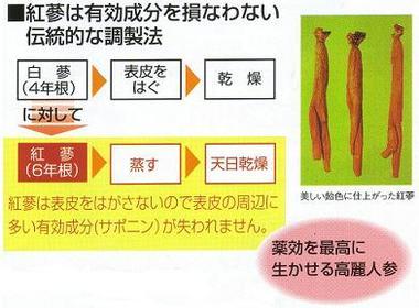 紅参(6年根)の製造方法