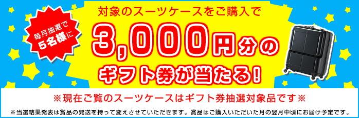 3000円ギフト券抽選プレゼント対商品