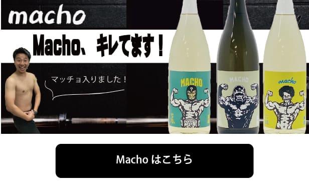 マッチョ macho 大盃