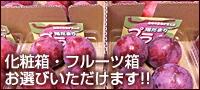 化粧箱・フルーツ箱 お選びいただけます!!