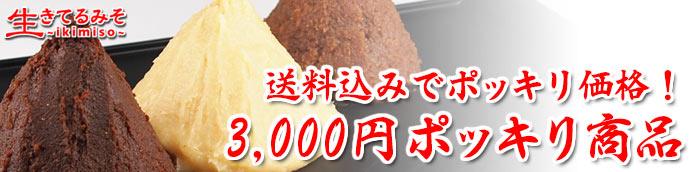 3,000円ポッキリ商品