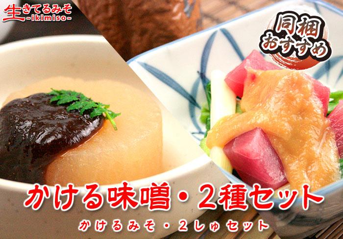 かける味噌・2種セット