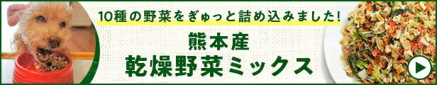 熊本産乾燥野菜ミックス