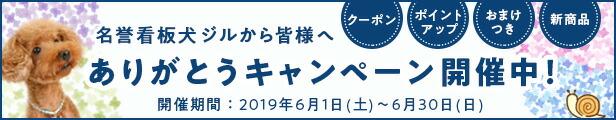 6月イベントありがとうキャンペーン